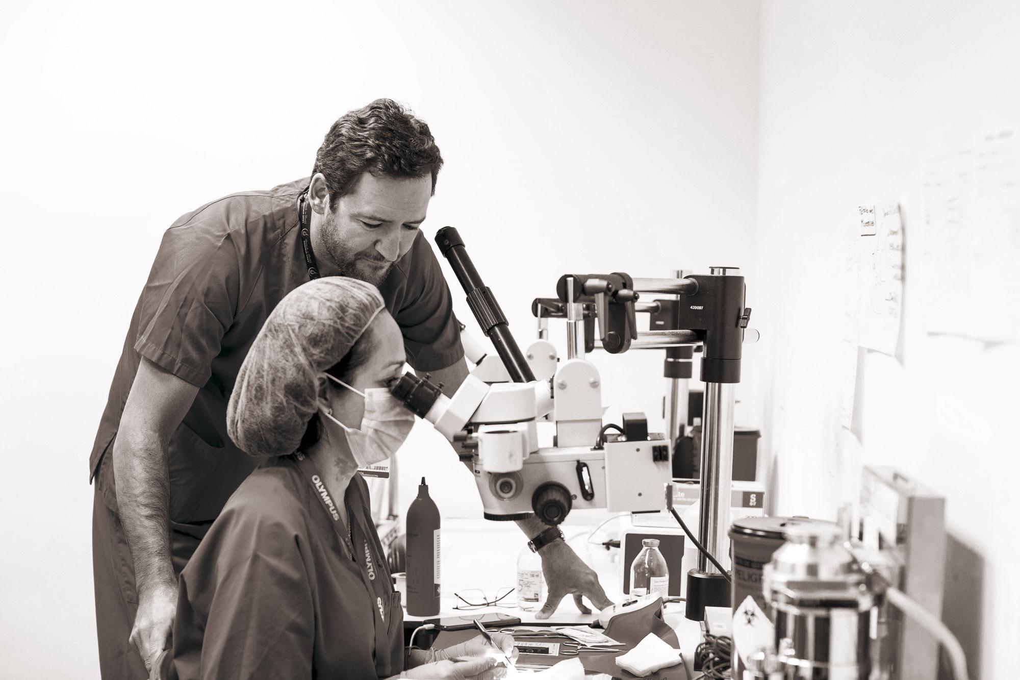 El equipo del doctor Hernández Oliveros, del Hospital Universitario La Paz, investiga el avance en trasplante de intestino pediátrico.